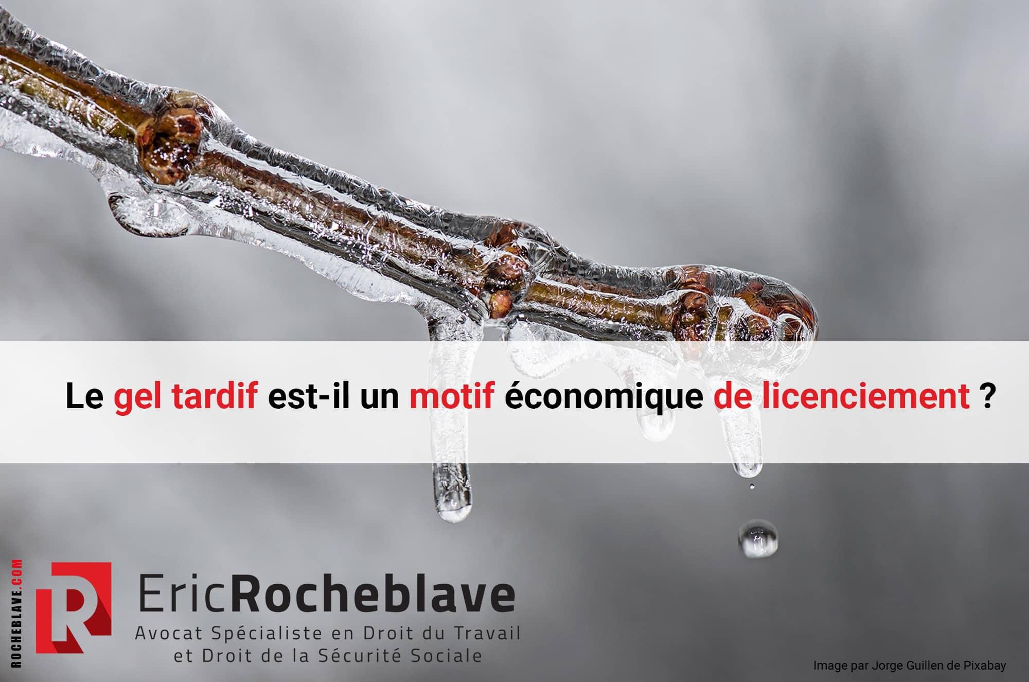 Le gel tardif est-il un motif économique de licenciement ?